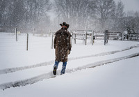 Cowboy Walking in the Snow