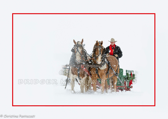 Sunrise Pack Station Sleigh Ride-9
