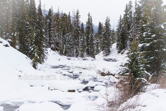 A snow covered river in Yellowstone National Park in January