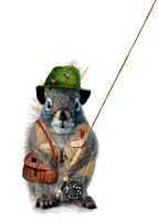 Fly fishing squirrel