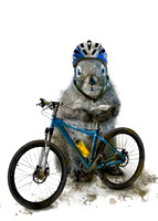 Mountain Biker Squirrel