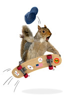 Skateboarding Squirrel