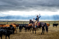 King of Hearts Ranch Branding event in Montana